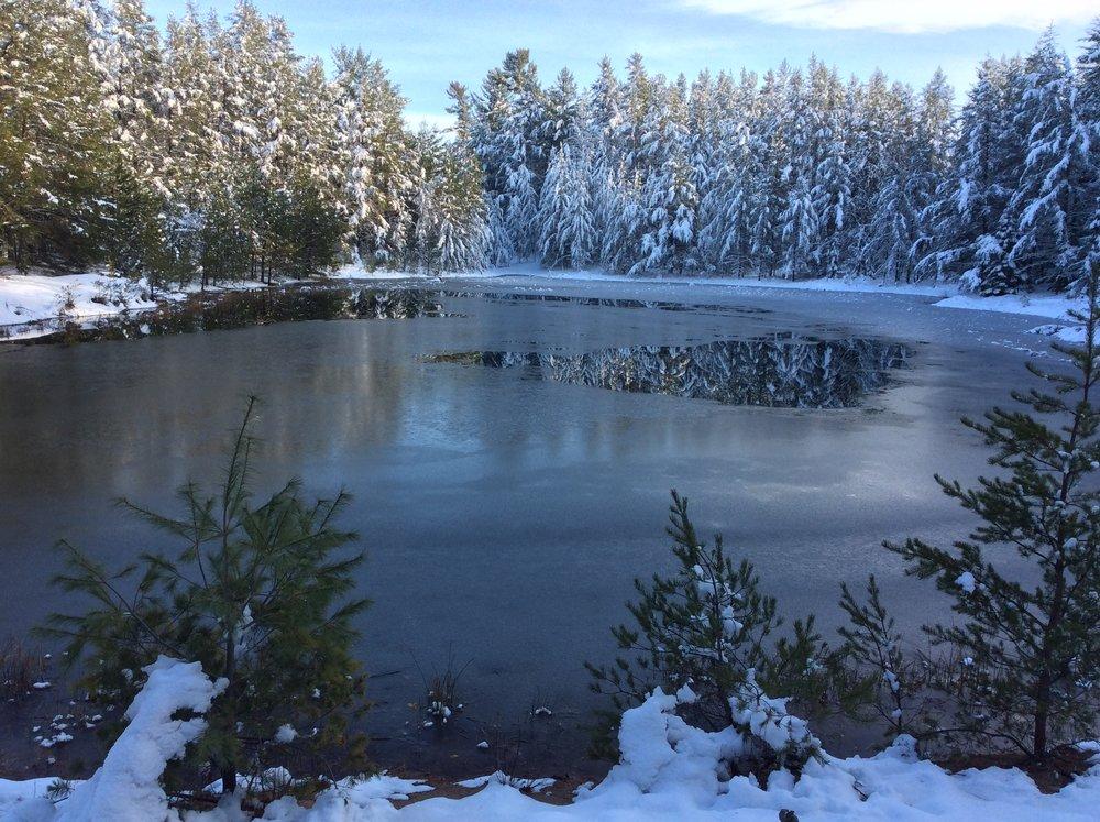 pond-snow.JPG