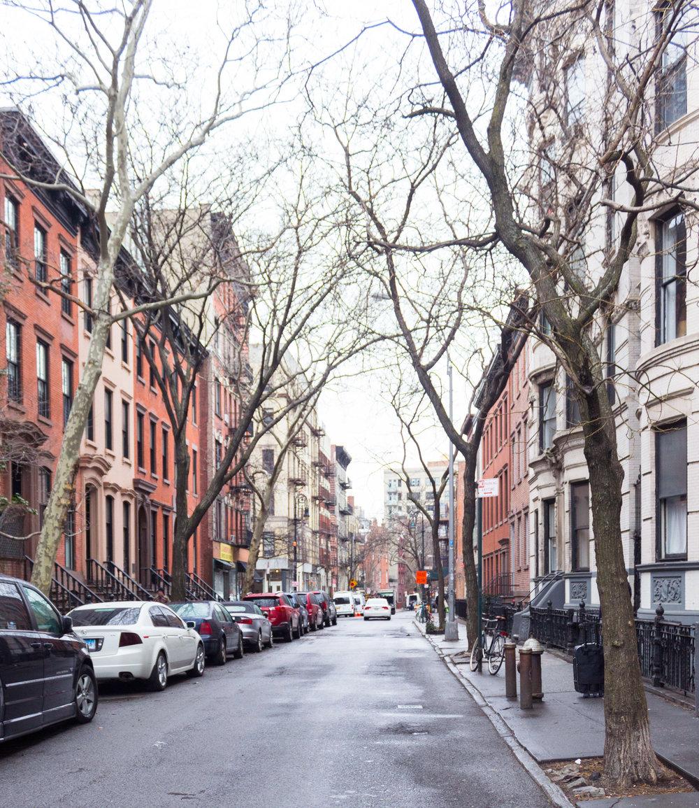 NYCFebruary2016_11WEB.jpg