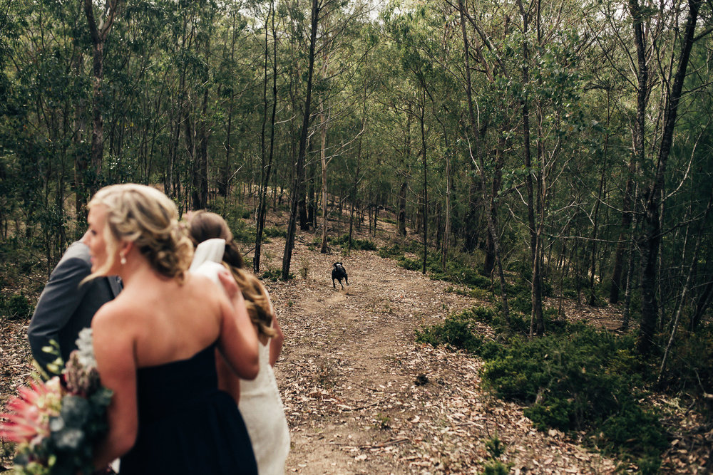 Byron Bay Wedding Photography (119 of 219).jpg