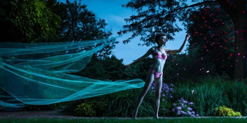 Alexander Butterfield Photography