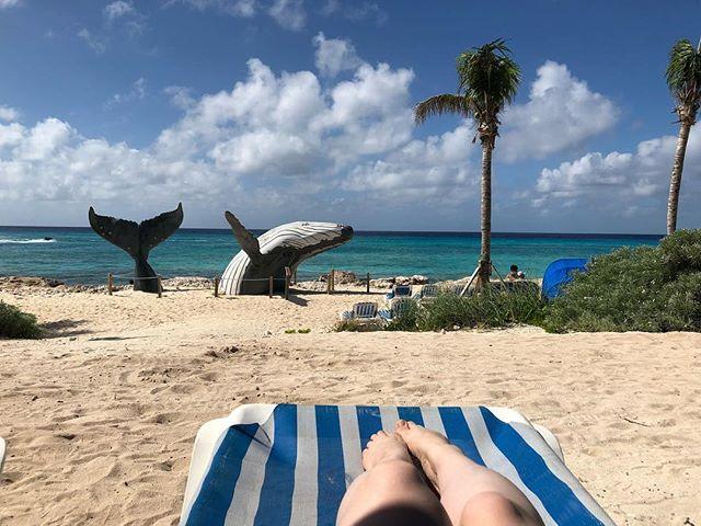 Some sunshine for my pale ass. 😂🇹🇨🌴☀️💕 #GrandTurk