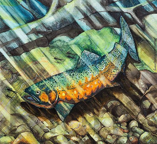 Golden trout with copyright.jpg