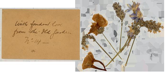 FlowersFromIpswich