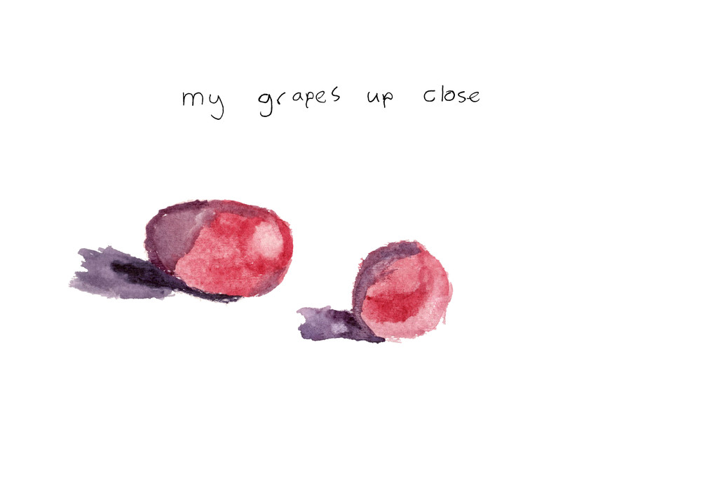 my grapes up close.jpg