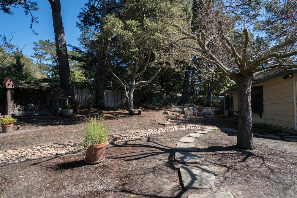 32 backyard 1.jpg