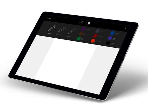 iPad color selection screen
