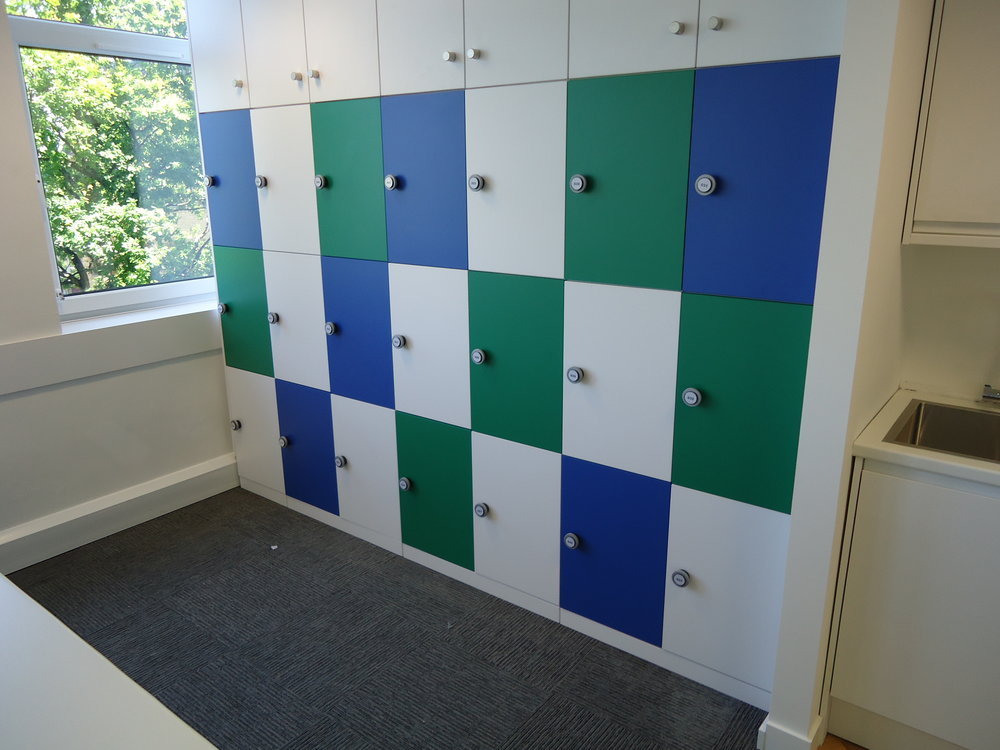 Storagewall Lockers Blue and Green