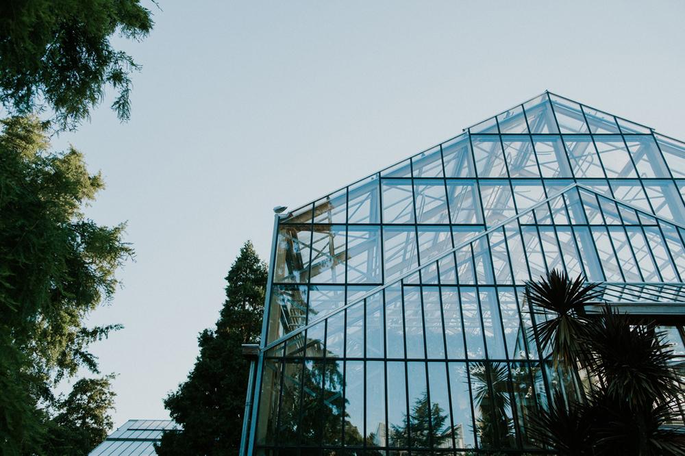 greenhouse at hortus botanicus leiden