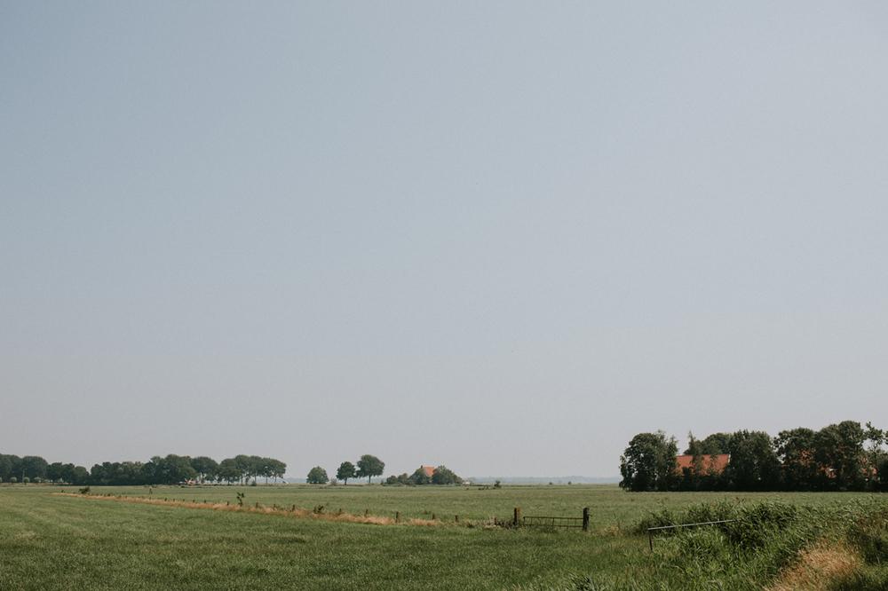 impressie van het landschap van it flinkeboske