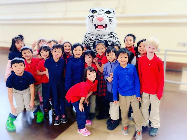 Happy #Friday from Sejong's #Mascot #백호 (Baek Ho- White Tiger). He made a special appearance today at our assembly.