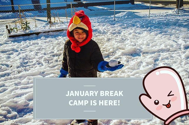 It's time for SEJONG'S JANUARY BREAK CAMP! January 2nd-4th Communication, logistics and waivers will be in student backpacks TODAY. Please return by Tuesday, Dec. 18th . . Activities include: Field Trips to Roller Skating, Trampoline Park and MN Zoo!!! MUST ALSO COMPLETE Skyzone's online waiver here: https://stpaulstore.skyzone.com/waiver