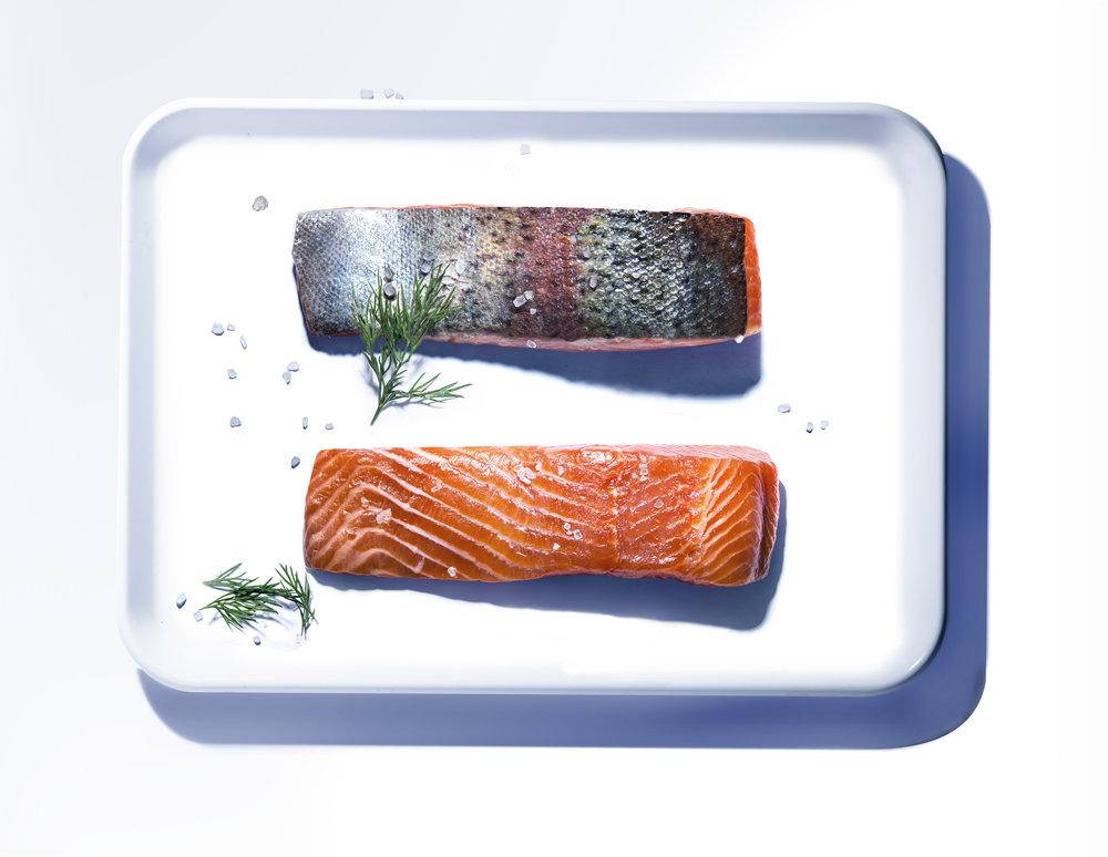 sea_trout.jpg