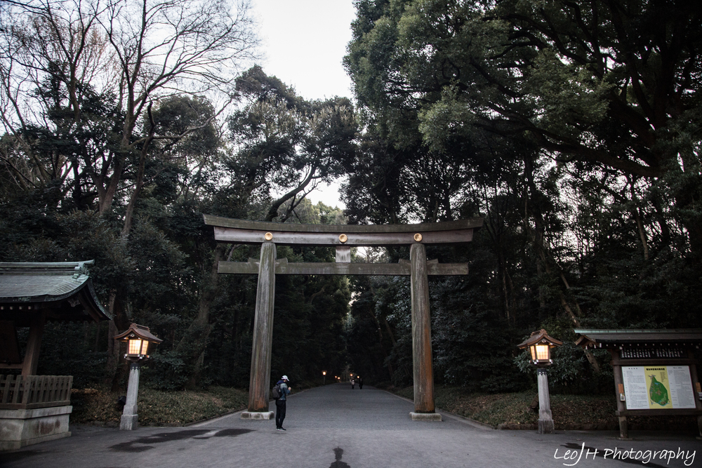 The huge torii at one of the entrances to Meiji Shrine