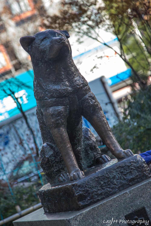 The landmark of Shibuya: Hachiko