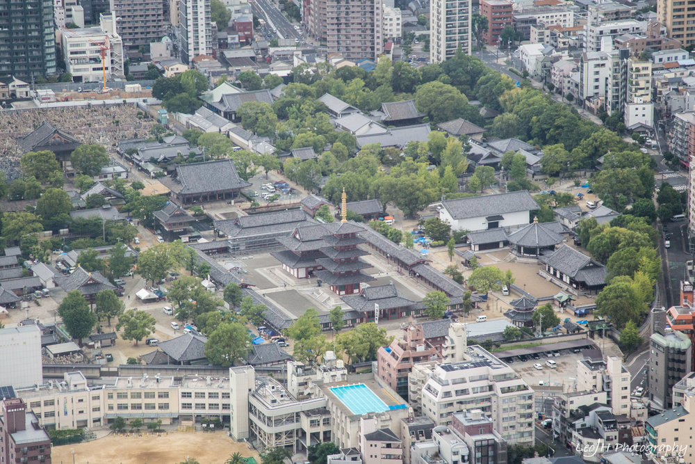 View of Shittenoji Temple where I was at earlier, from the observatory