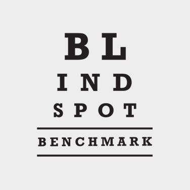 Blind Spot Benchmark