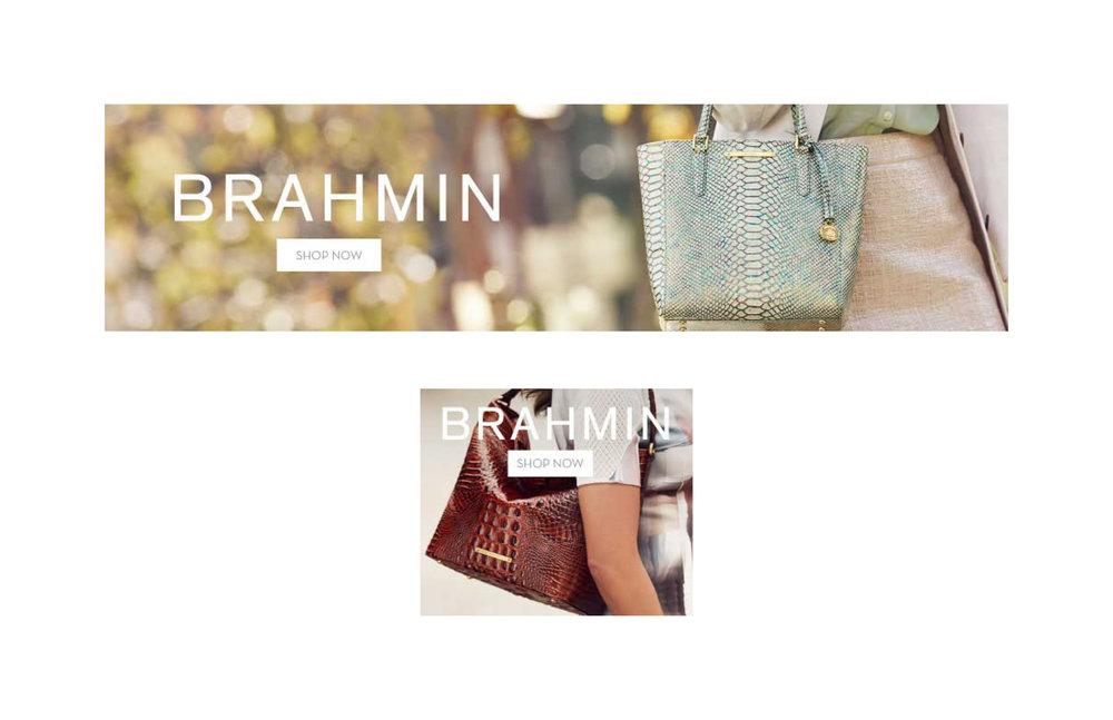 BRAHMIN_photos2.jpg