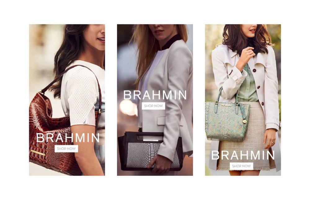 BRAHMIN_photos.jpg