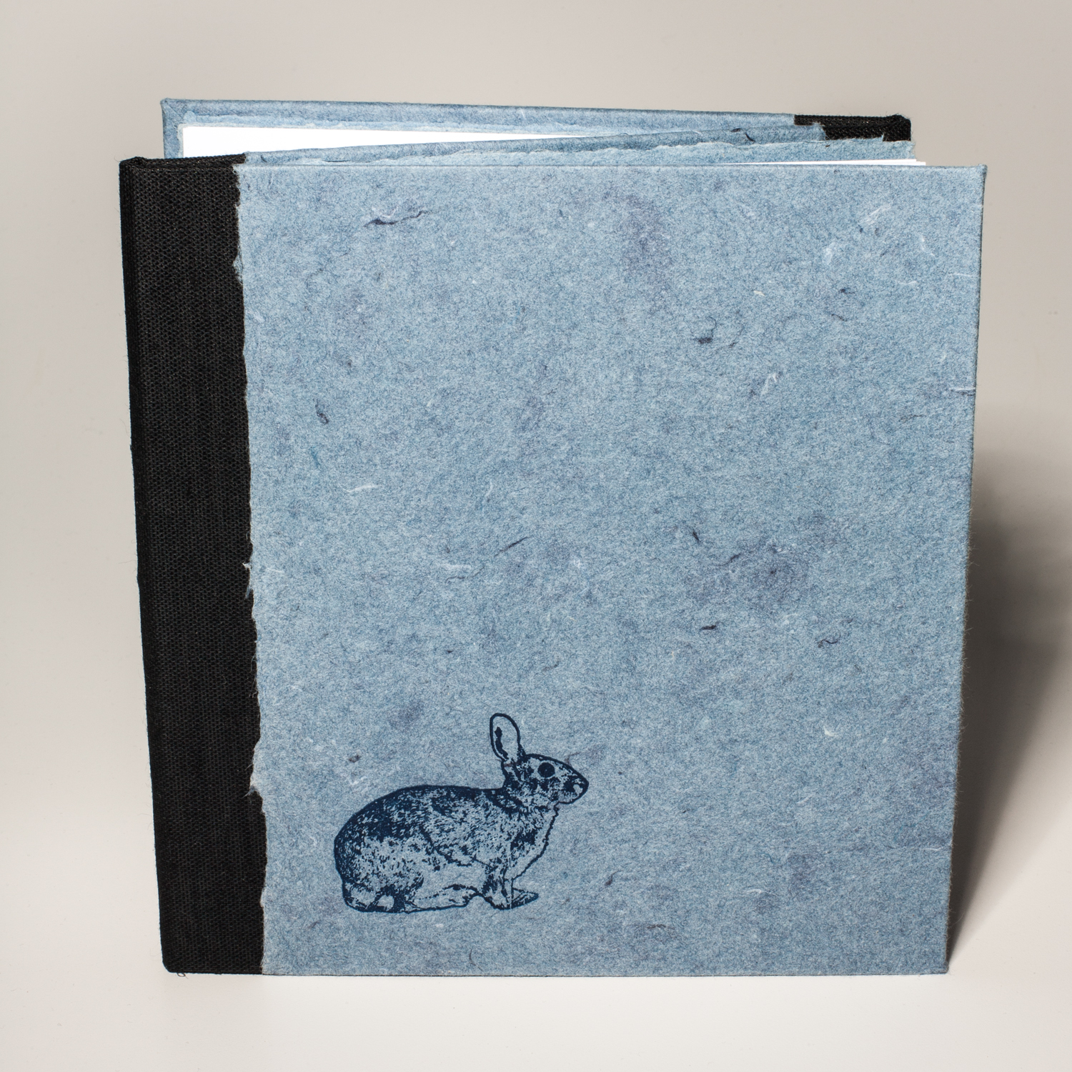 a_rabbit_runs_in_a_circle_cover