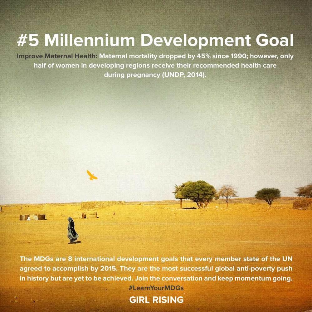 MDG-Goals_05.jpg