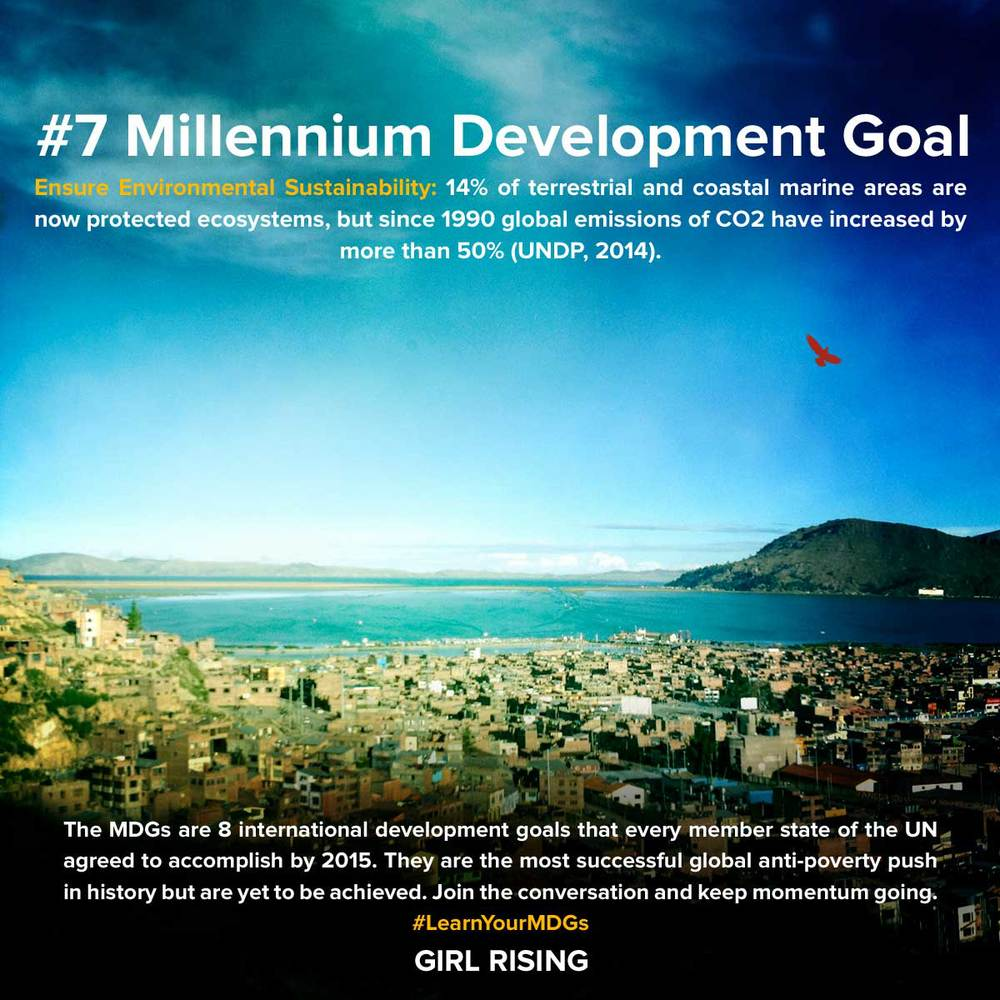 MDG-Goals_07.jpg