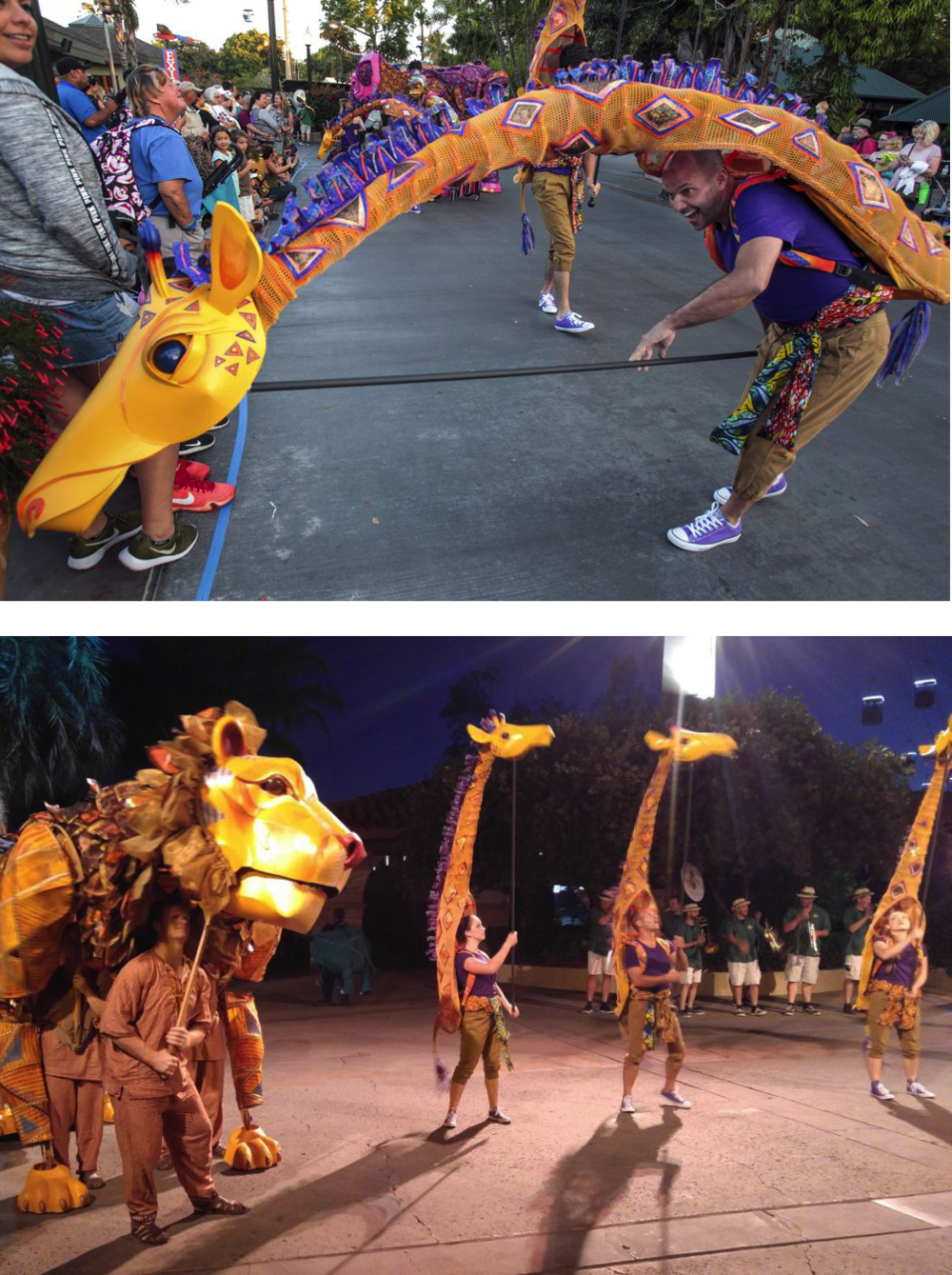 Giraffes, the Puppet Kitchen for San Diego Zoo 2016