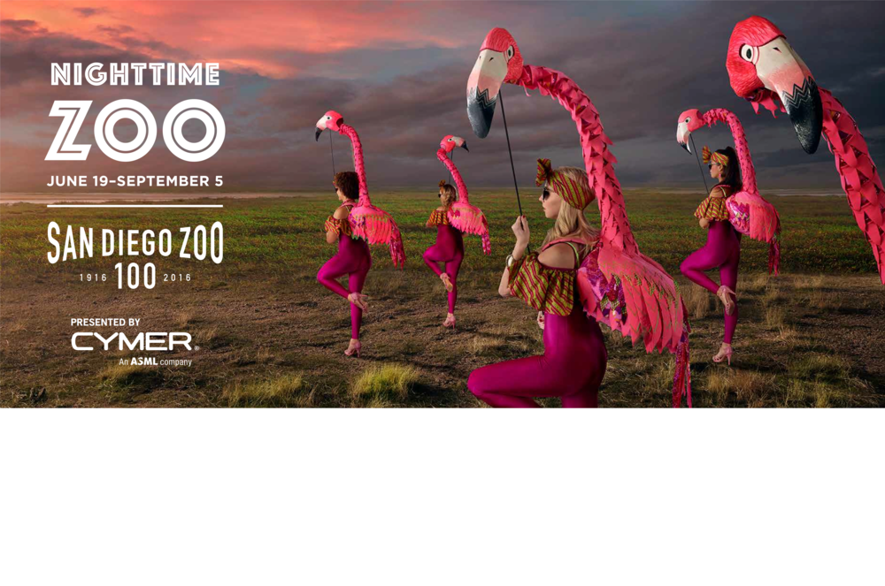 Flamingos, the Puppet Kitchen for San Diego Zoo 2016