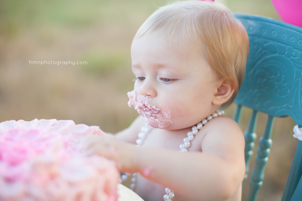 Cake Smash at Manassas Battlefield