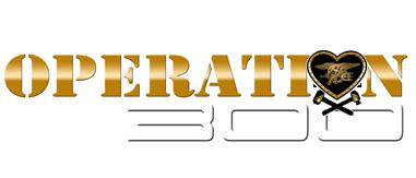 operation300