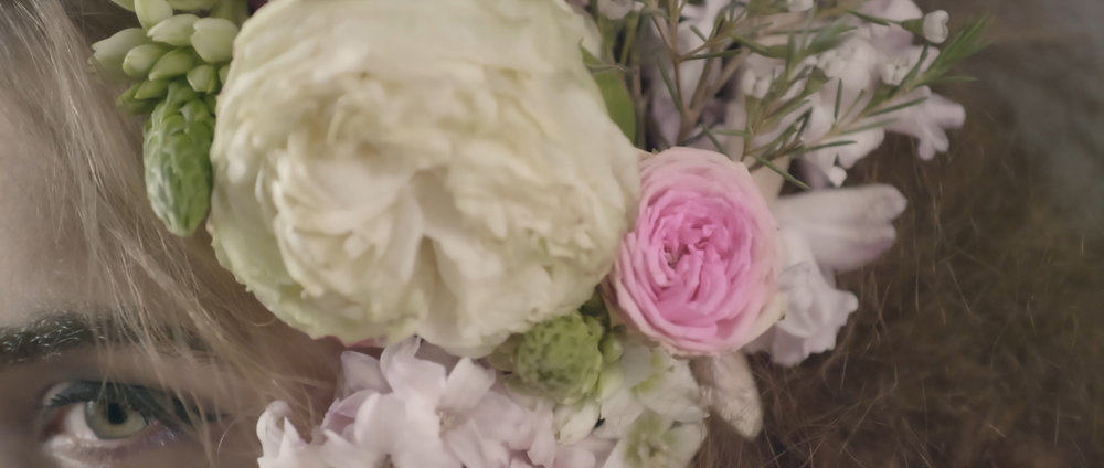 Close up pink flower.jpg