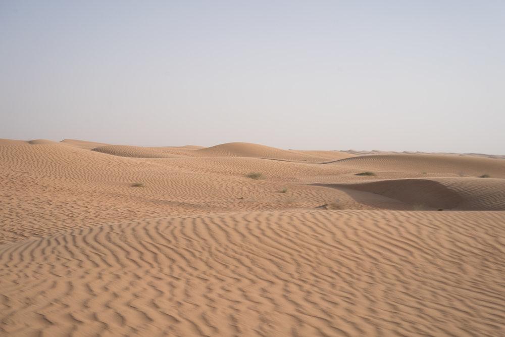 18_05_DH_Form_Dubai-298.jpg