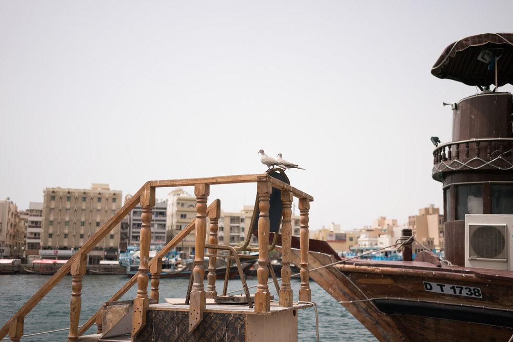 18_05_DH_Form_Dubai-037.jpg
