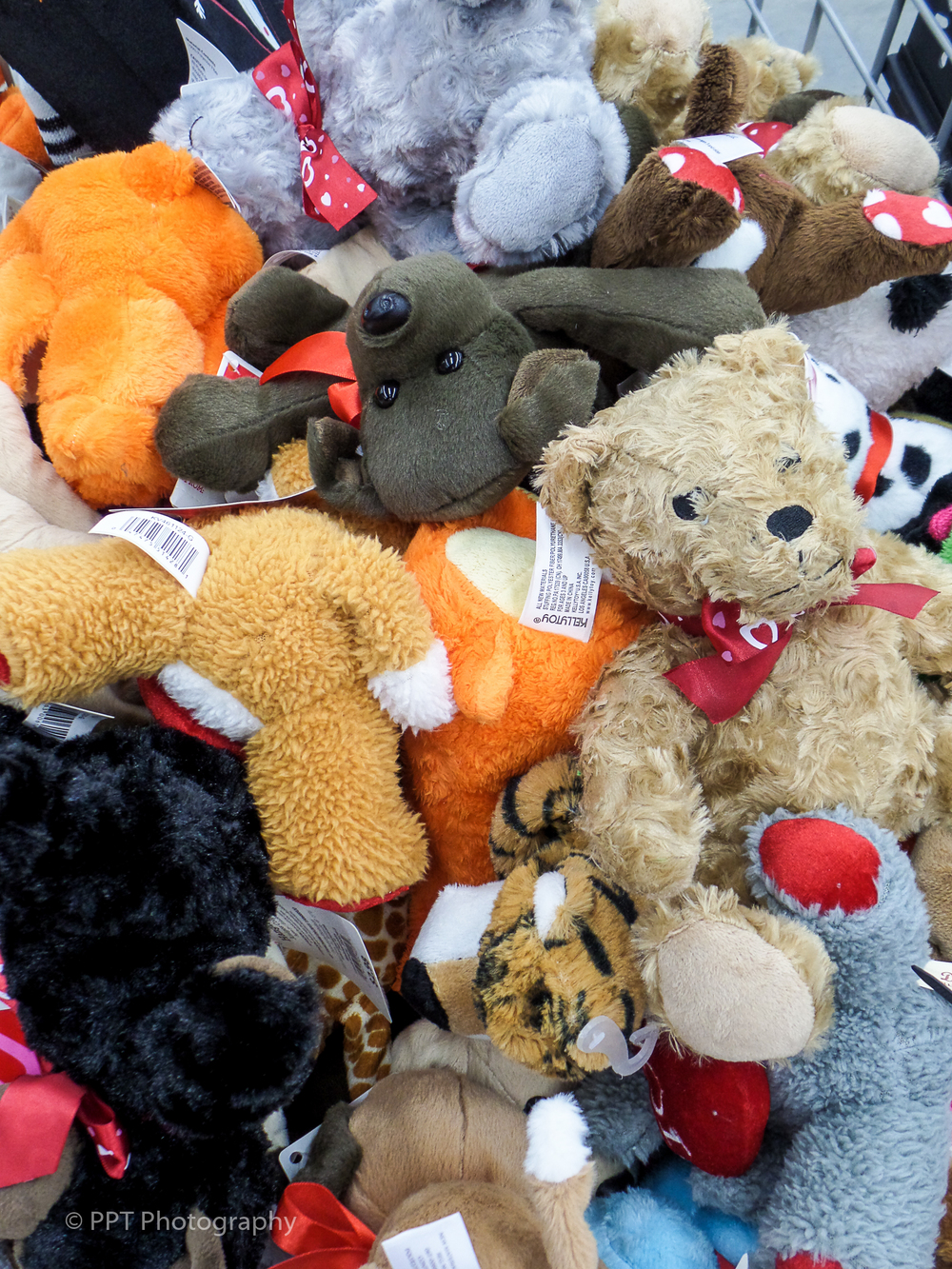 Stuffed animals on Valentines Day