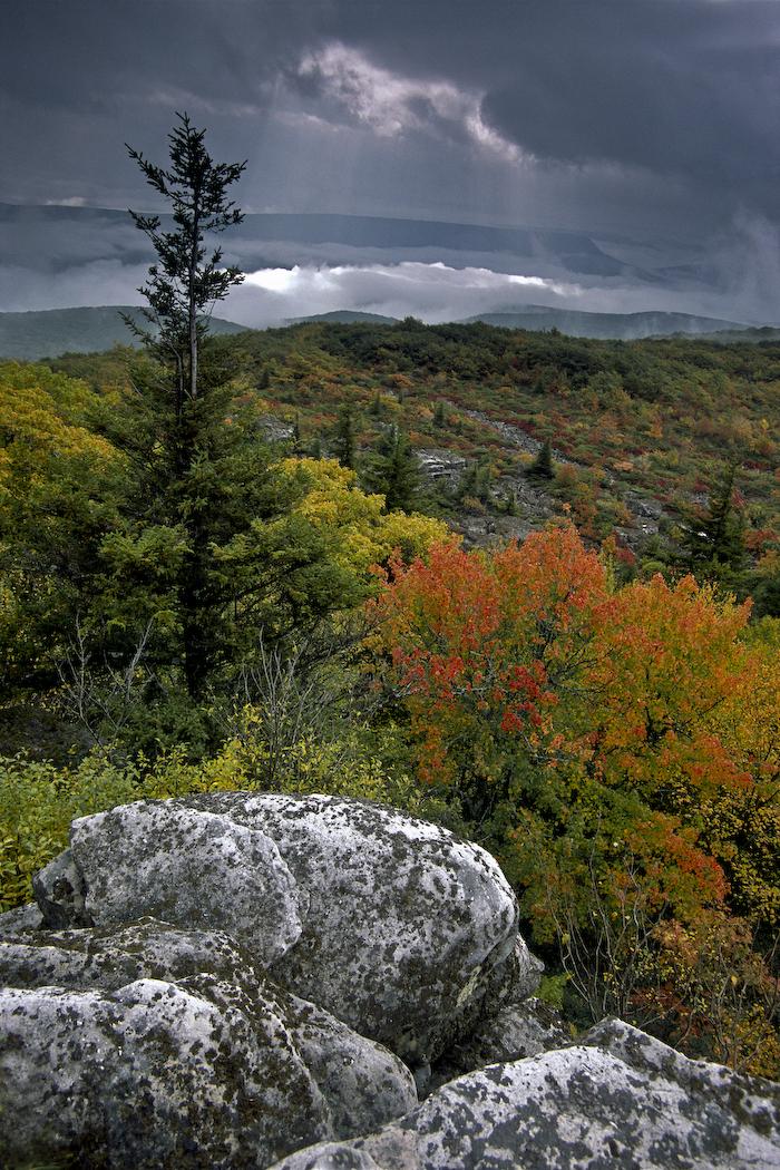 Bear Rock Preserves