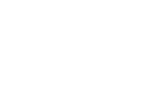 Forecastle Foundation