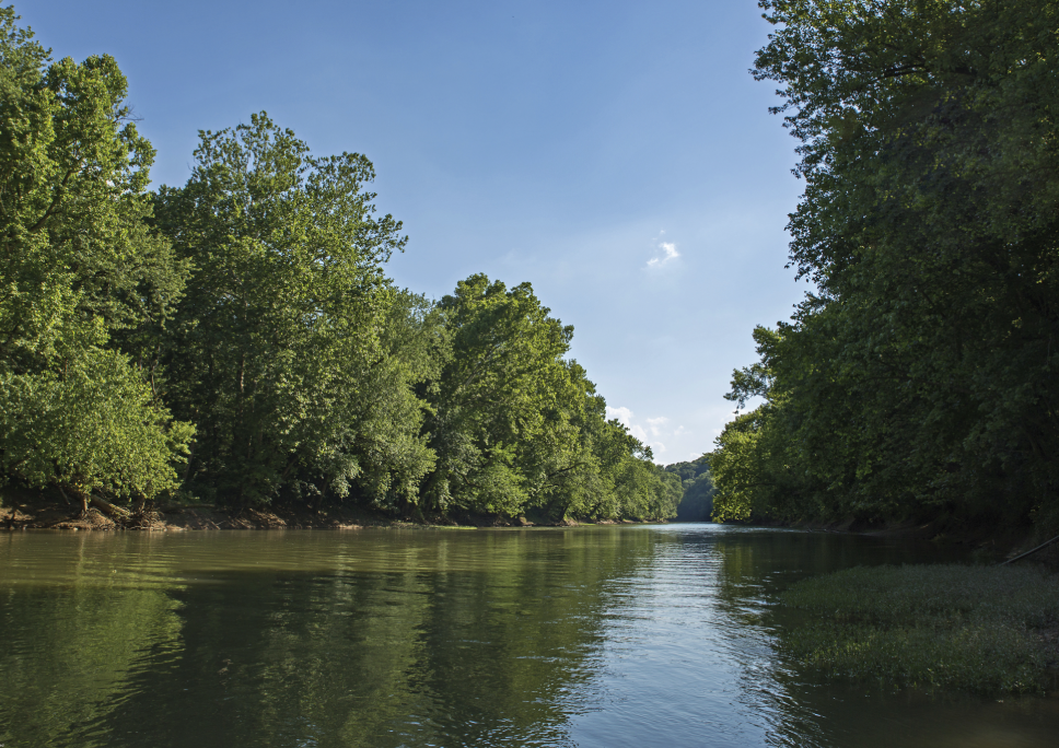 The Nature Conservancy    Green River, Kentucky