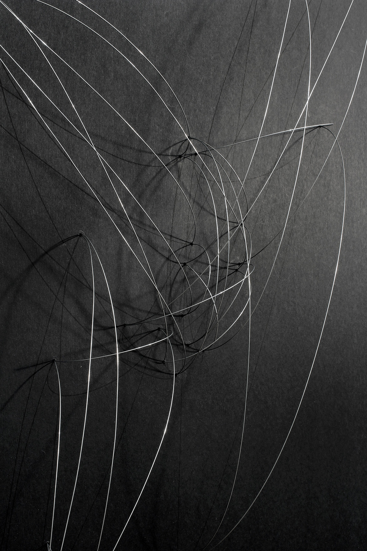Trasplante-Trayectoria-detalle-1-web.jpg