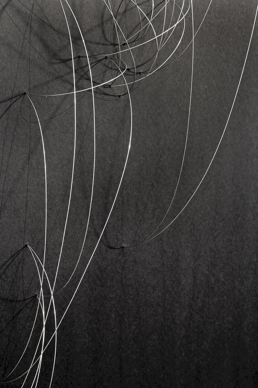 Trasplante-Trayectoria-detalle-3-web.jpg
