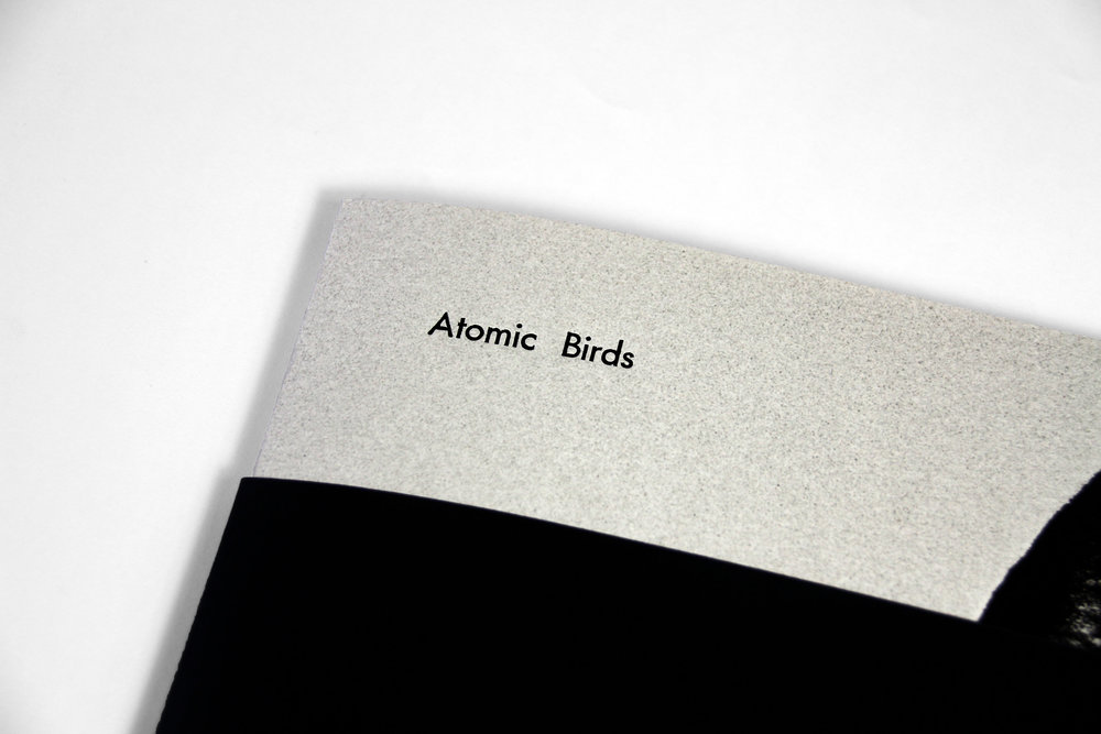 Atomic Birds, by Tim Georgeson and Caia Hagel Published by Anteism 44 pg (Black and White, Digital) 9 in x 12 in - 23 cm x 30.5 cm Softcover - Saddle binding Belly band