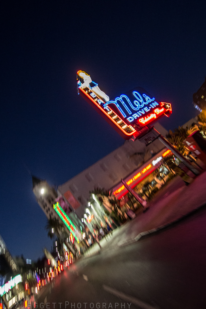 2014_Liz_Leggett_Photography_California_watermarked-5391.jpg