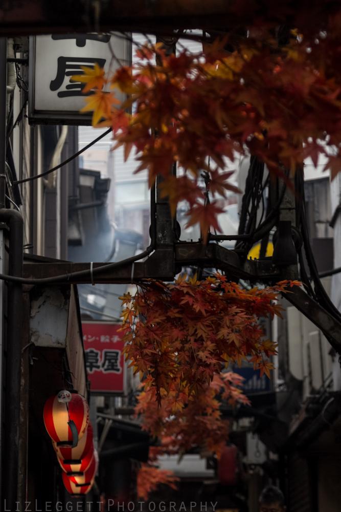 2015_Liz_Leggett_Photography_Japan_WATERMARKED-.jpg