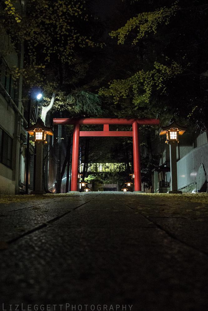 2015_Liz_Leggett_Photography_Japan_WATERMARKED-6295.jpg