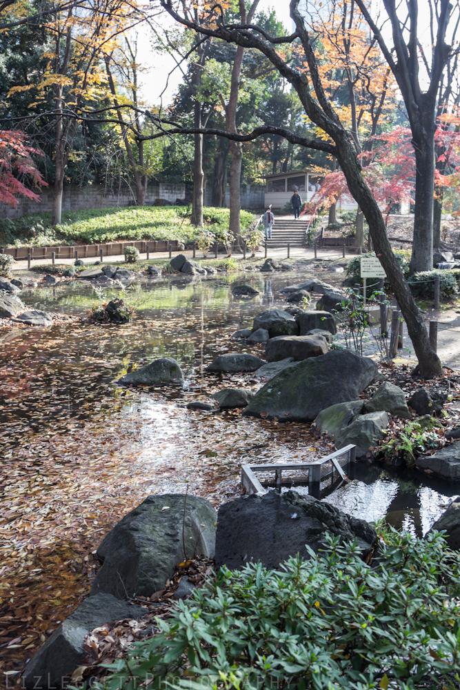 2015_Liz_Leggett_Photography_Japan_WATERMARKED-6685.jpg