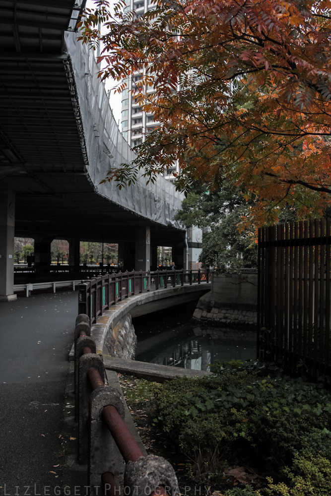 2015_Liz_Leggett_Photography_Japan_WATERMARKED-6999.jpg