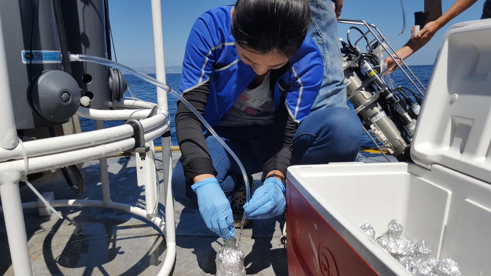 Huanting sampling seawater so she can analyze the isotopic variants of the dissolved gases. They tell us about how life (mostly microbes) use their nutrients, as well as how other aspects of the ocean can affect that.