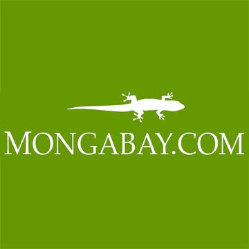 Lesley de Souza Mongabay.com