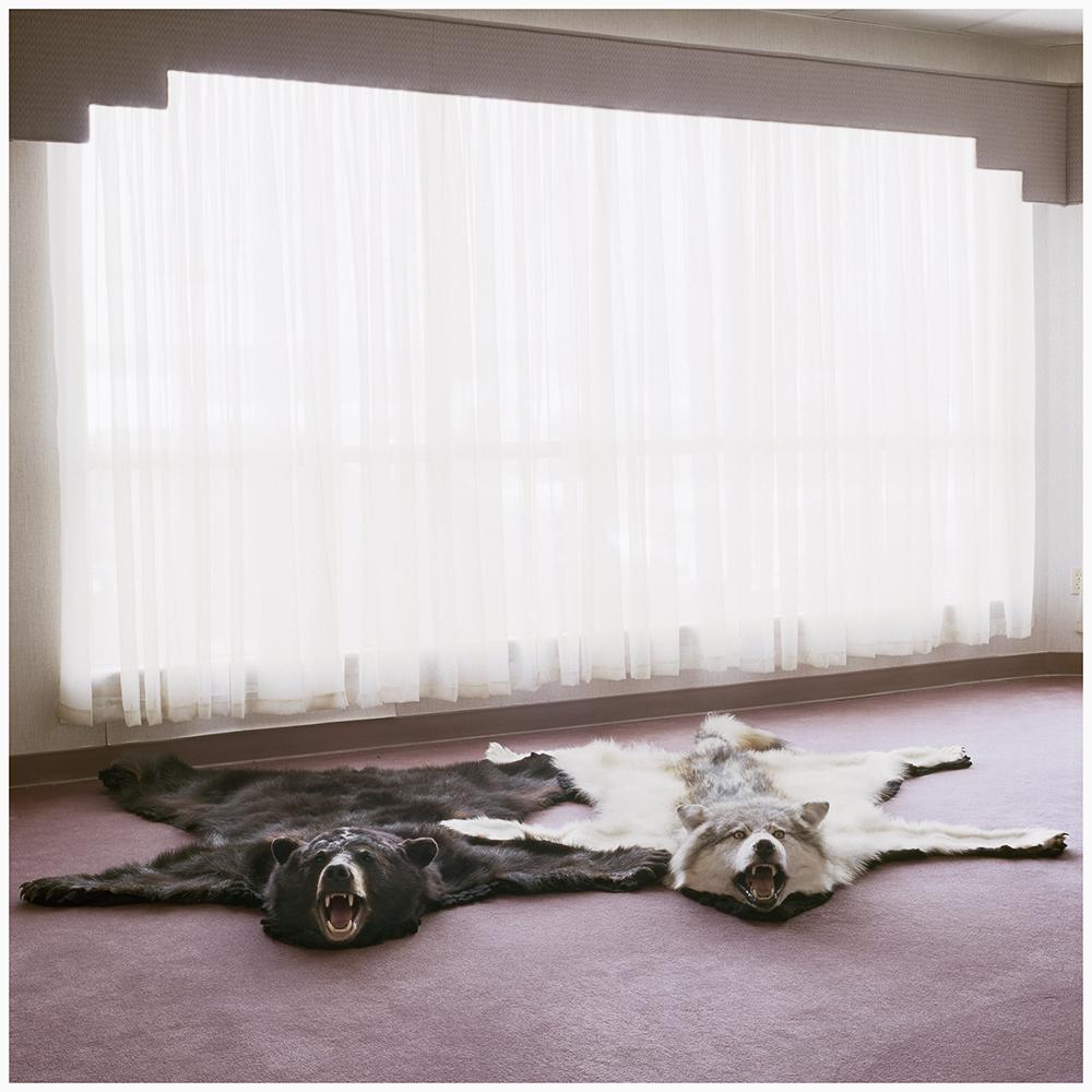 carpets15.25.jpg