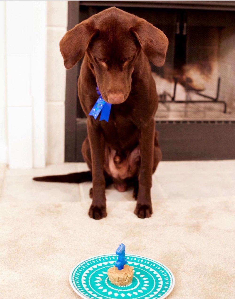 Drake's first birthday.
