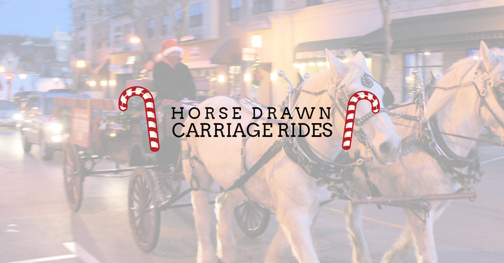 carriage_rides_bg.jpg