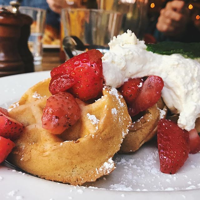 When your parents surprise you and show up in #chicago for the weekend that can only mean one thing... #treatyoself !!! . . . .  #rivernorth #brunch #frenchtoast #homemadewhipcream #NOMaste #chicagofoodie #strawberries